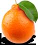 Mandarin nipple packshot.png