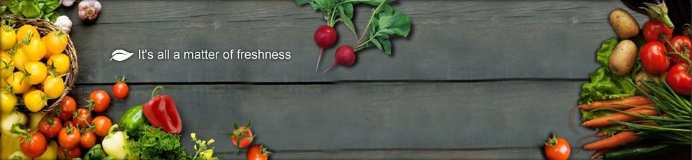 VegetableTop.jpg