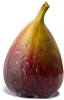 fig packshot.png