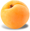 Apricot packshot.png