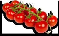Cherry tomato packshot.png