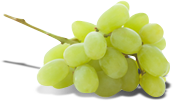 Grapes Thompson packshot.png
